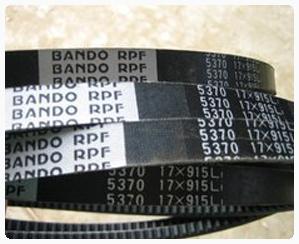 DÂY CUROA BANDO RPF3xxx, RPF5xxx, RPF7xxx